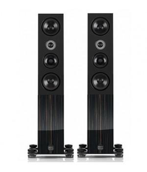Напольная акустика Audio Physic MIDEX -Black Ebony High Gloss-