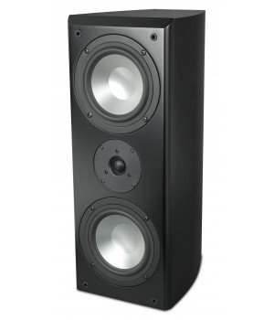 Полочная акустика RBH SX-661