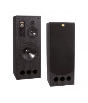 Radiotehnika SM-300 Black