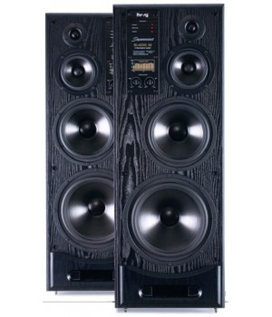 Radiotehnika SM-400M Black