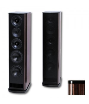 Напольная акустика T+A Criterion TCD 210 S High Gloss Macassar Ebony