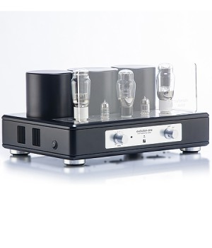 Интегральный усилитель Trafomatic Audio Evolution One black/silver plates