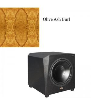 Legacy Audio Metro Olive Ash Burl